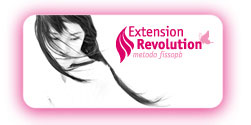 extension revolution